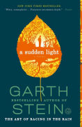A Sudden Light by Garth Stein